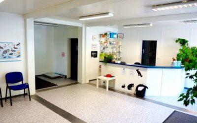 Concept-modulaire-accueil-des-clients-stylé-et-diverses-salles-de-soins-vétérinaires-2-400x250